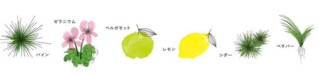 草花木果 大人のニキビライントライアルのオリジナルレシピ