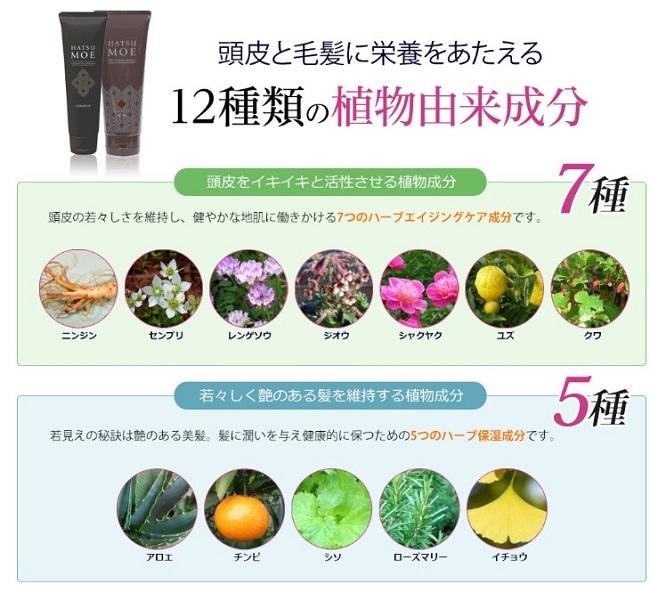 髪萌カラートリートメントの12種類の植物由来成分